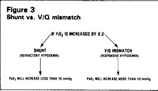 Figure 3 From Ventilation Perfusion Relationships Semantic Scholar