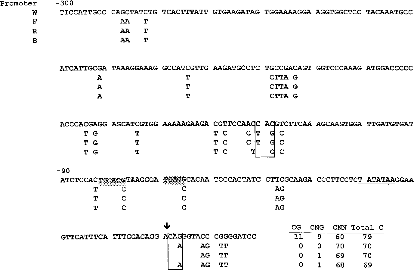 Figure 1 from Cytosine methylation at CG and CNG sites is