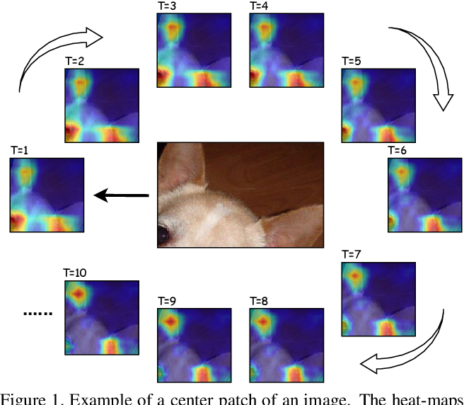 Figure 1 for Focus Longer to See Better:Recursively Refined Attention for Fine-Grained Image Classification