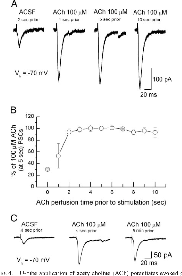 Ure 4 From Synaptically Released And Exogenous Ach Activates. 4 Utube Application Of Acetylcholine Ach Potentiates Evoked Glutamatergic. Wiring. Clark Ctx 70 Wiring Diagram At Scoala.co