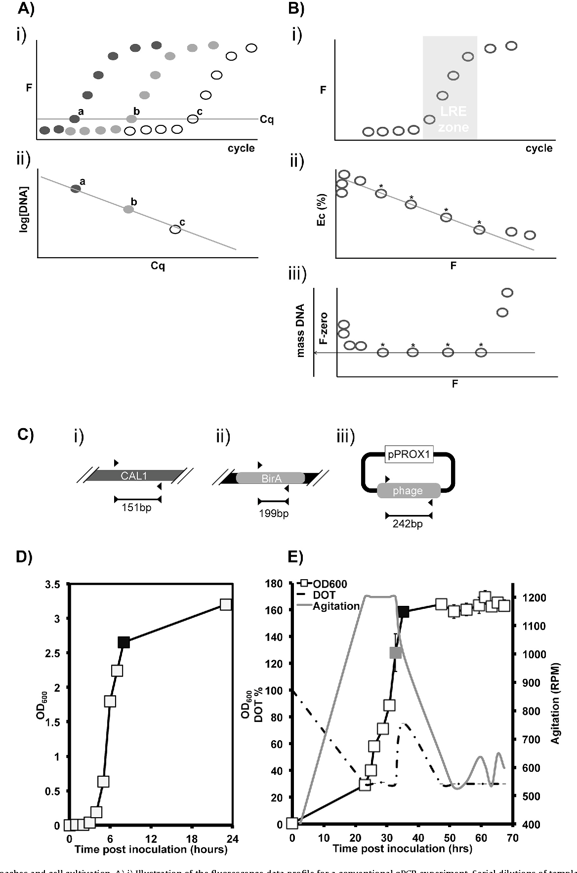 Figure 1 from Measuring E. coli and bacteriophage DNA in cell ...