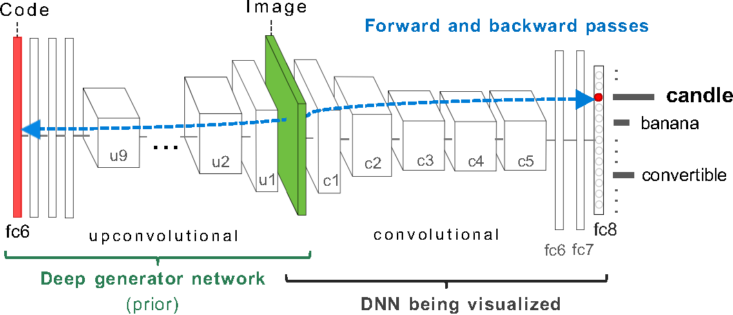 Figure 2 for Synthesizing the preferred inputs for neurons in neural networks via deep generator networks
