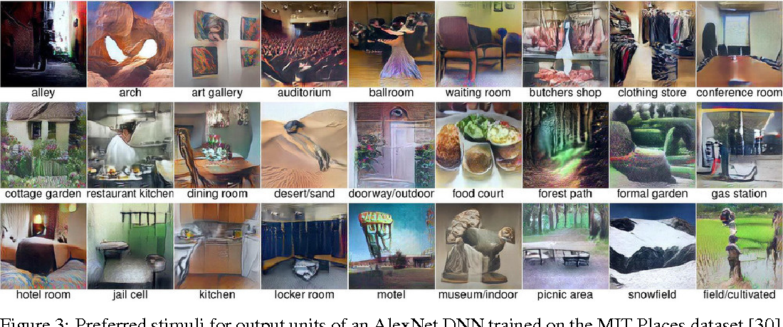 Figure 3 for Synthesizing the preferred inputs for neurons in neural networks via deep generator networks