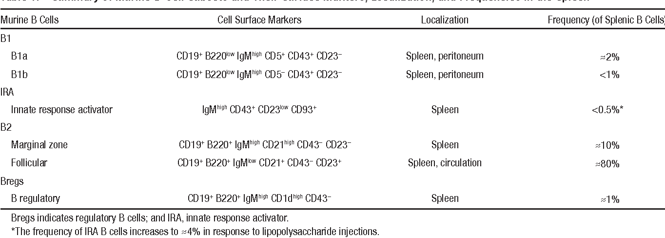 Table 1. Summary of Murine B-Cell Subsets and Their Surface Markers, Localization, and Frequencies in the Spleen