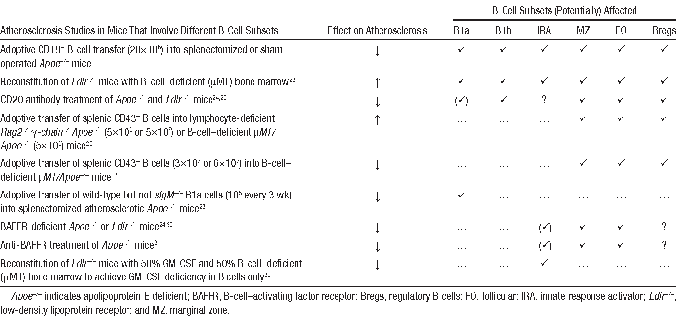 Table 2. Summary of Experimental Studies With Respect to the Role of Different B-Cell Subsets in Atherosclerosis