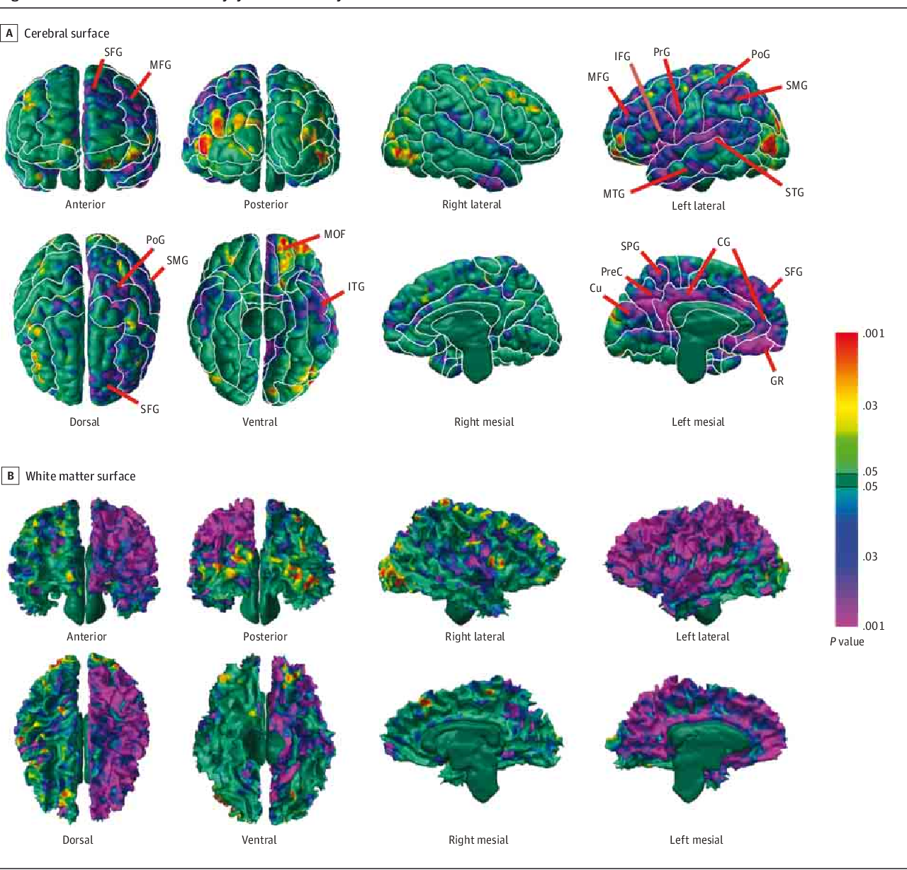 Cognition And Behavior White Matter >> Effects Of Prenatal Exposure To Air Pollutants Polycyclic