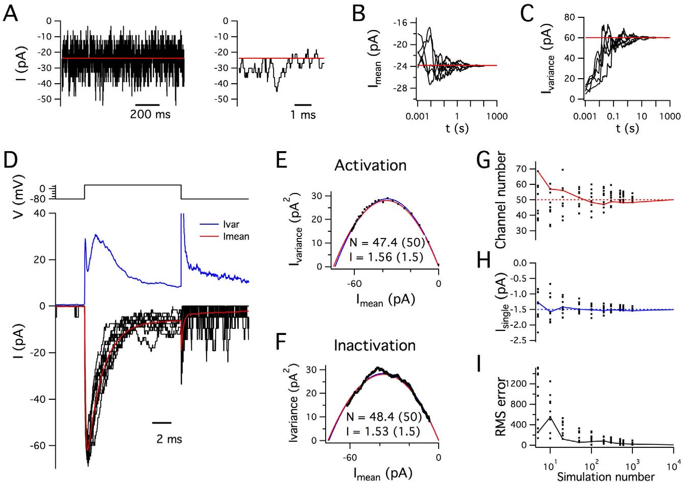 Figure 2 From Explorer Stochastic Ion Channel Gating In Dendritic Circuit Design Simulation Component 40 Accurate A Examples Of Simulated