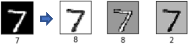 Figure 1 for Structure-Preserving Transformation: Generating Diverse and Transferable Adversarial Examples