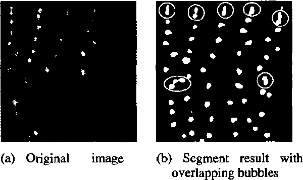 Figure 1. Aerated water flow image and the extracted bubble