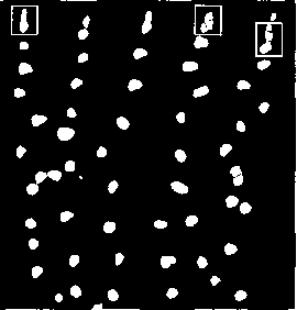 Figure 9.Over-splitted bubbles
