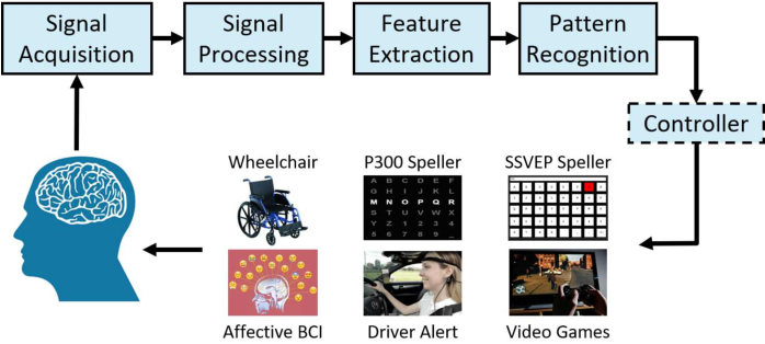 Figure 1 for Transfer Learning for EEG-Based Brain-Computer Interfaces: A Review of Progress Made Since 2016