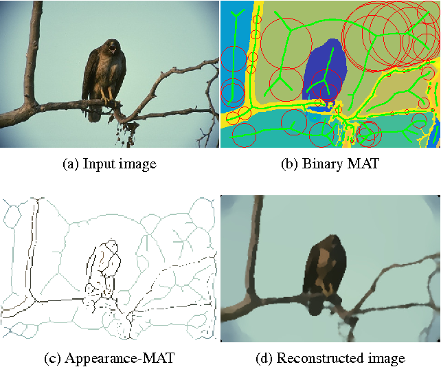 Figure 1 for AMAT: Medial Axis Transform for Natural Images