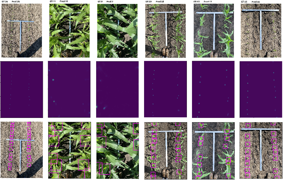 Figure 4 for High-Throughput Image-Based Plant Stand Count Estimation Using Convolutional Neural Networks