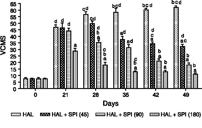 Effect of spirulina maxima on the haloperidol induced tardive