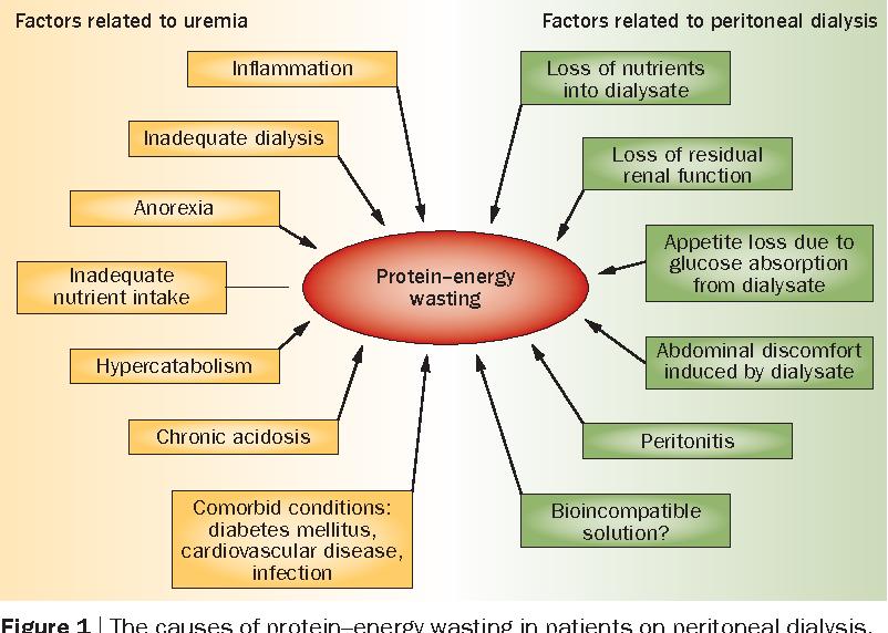 Nutrition In Patients On Peritoneal Dialysis Semantic Scholar