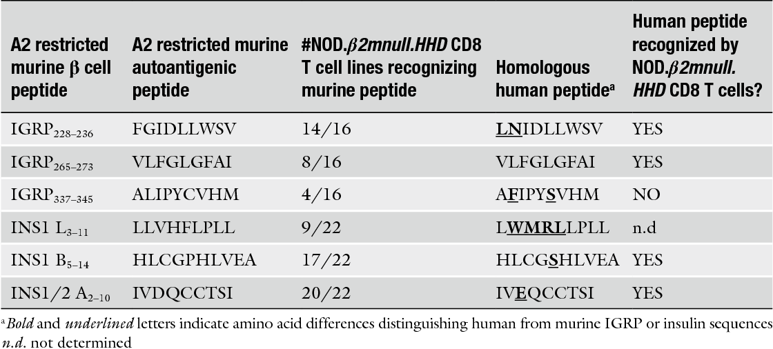 Table 1 Murine and human IGRP and insulin peptides recognized in a HLA-A2.1 restricted fashion by islet derived CD8 T cells from NOD. β2m null .HHD mice