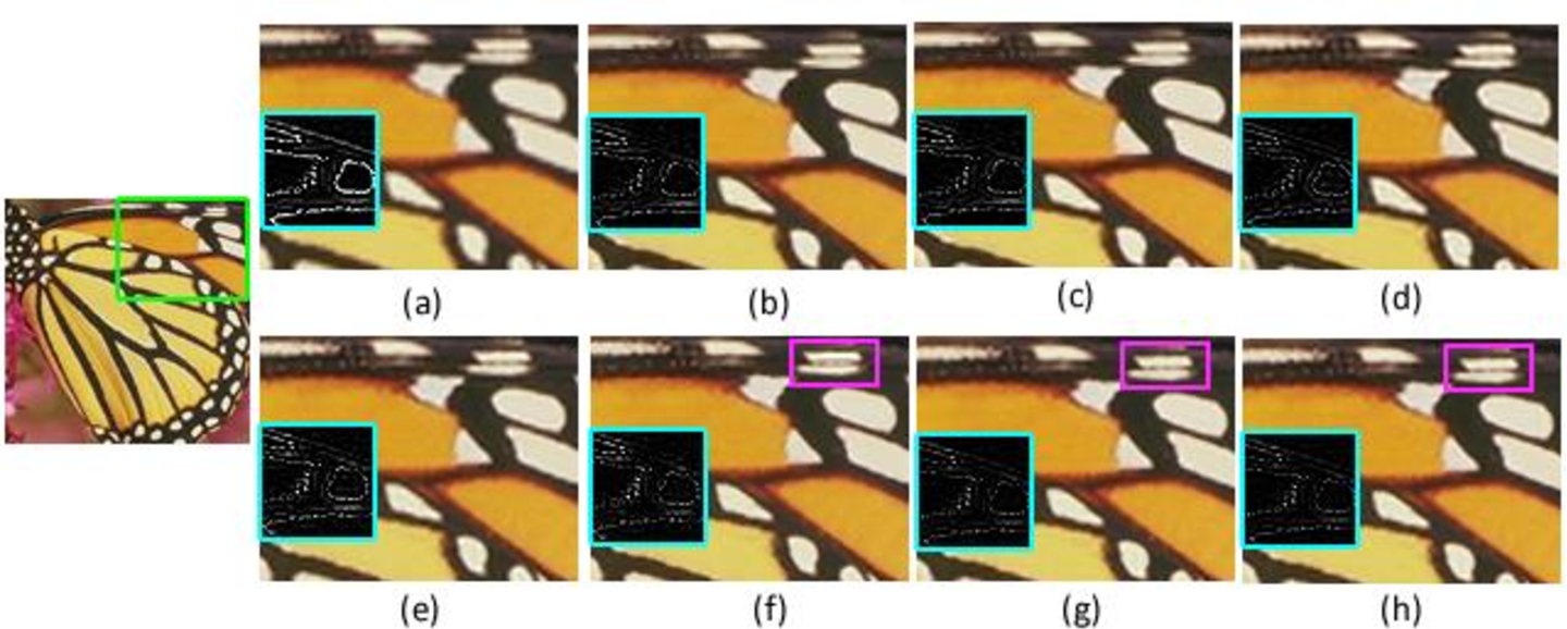 Figure 3 for Local Patch Encoding-Based Method for Single Image Super-Resolution
