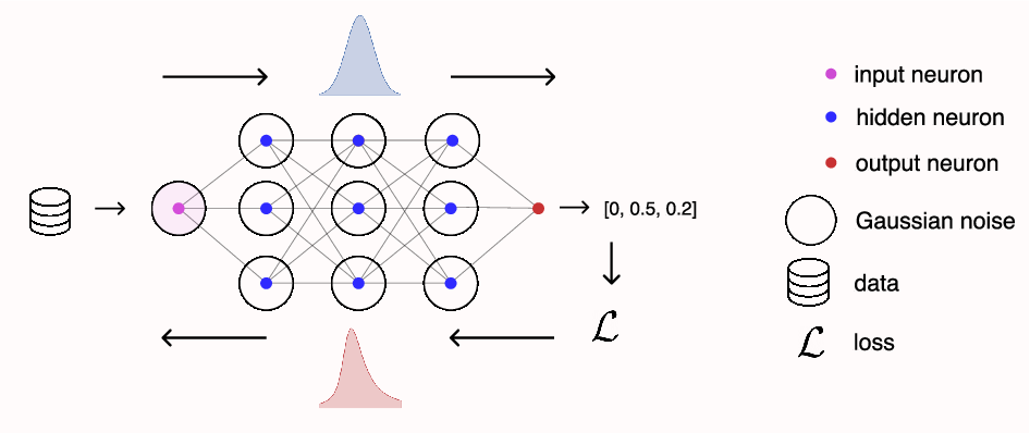 Figure 1 for Asymmetric Heavy Tails and Implicit Bias in Gaussian Noise Injections