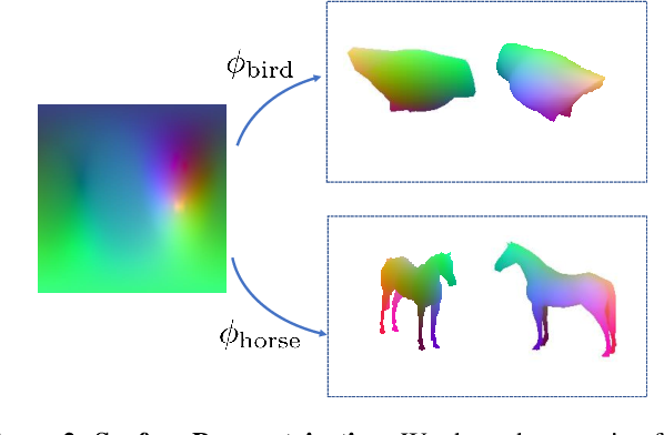 Figure 2 for Canonical Surface Mapping via Geometric Cycle Consistency