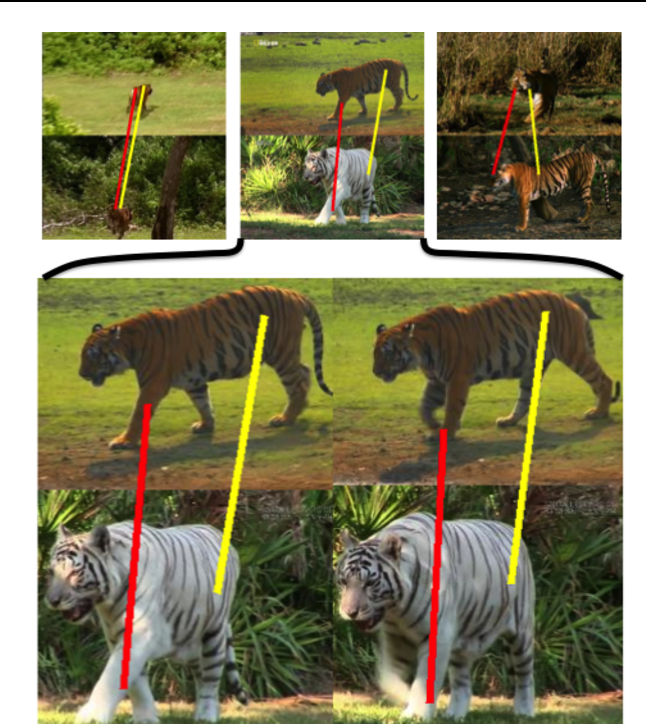 Figure 1 for Articulated motion discovery using pairs of trajectories