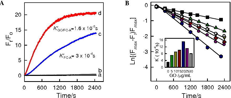Figure 2. (A) Time based fluorescence intensity changes (Ft/F0-1) of GO/FC-A (a), FC-A