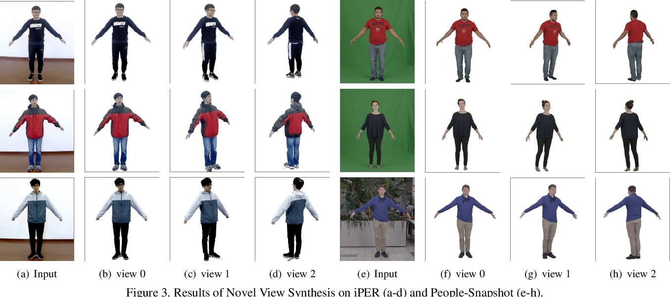 Figure 4 for Animatable Neural Radiance Fields from Monocular RGB Video
