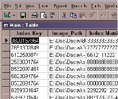 Figure 6. Index Database - structure