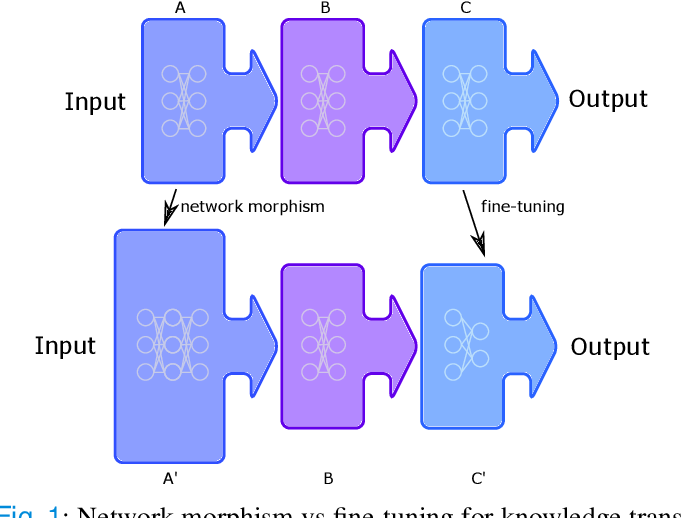 Figure 1 for Beyond Fine-tuning: Classifying High Resolution Mammograms using Function-Preserving Transformations