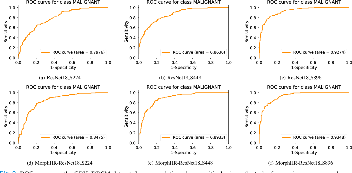 Figure 3 for Beyond Fine-tuning: Classifying High Resolution Mammograms using Function-Preserving Transformations