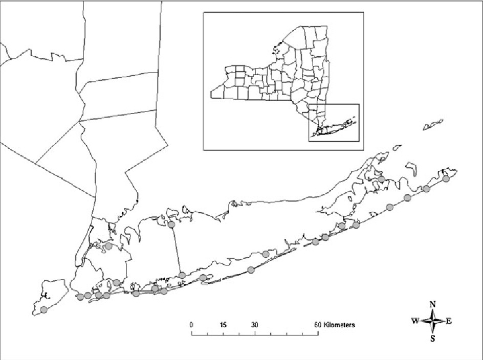Fig. 2 Former distribution of Cicindela dorsalis dorsalis on Long Island, New York. Gray circles represent approximate historical locations. County boundaries are shown