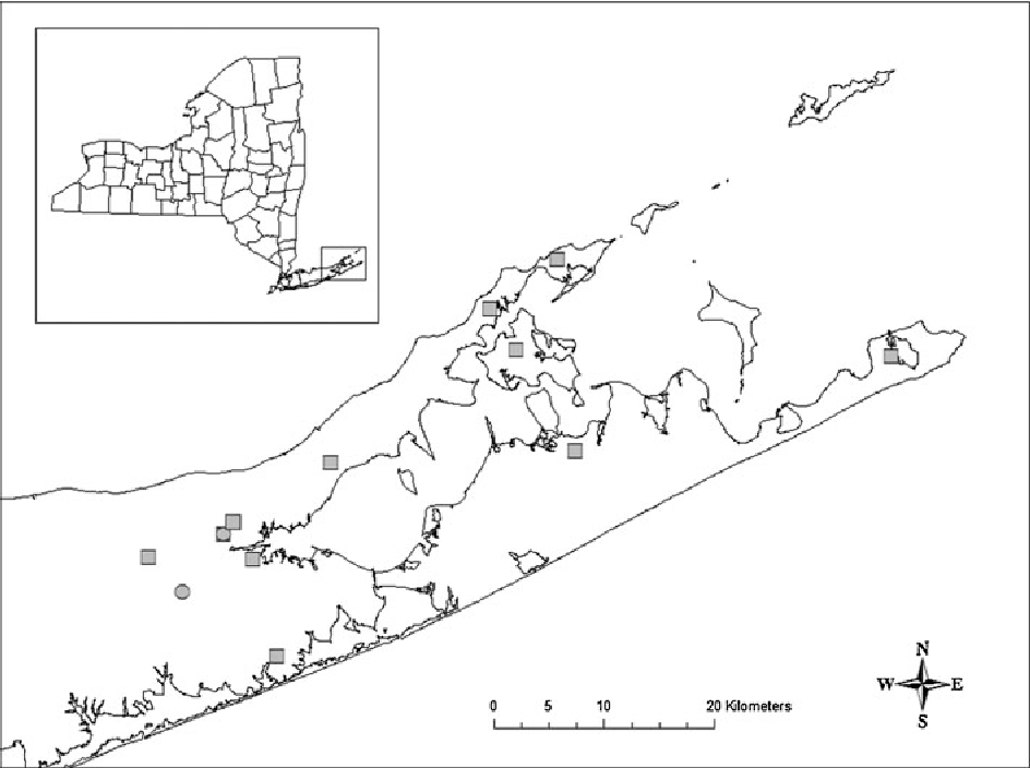 Fig. 4 Approximate historical locations for Cicindela patruela consentanea (squares) and C. abdominalis (circles) on Long Island, New York. County boundaries are shown