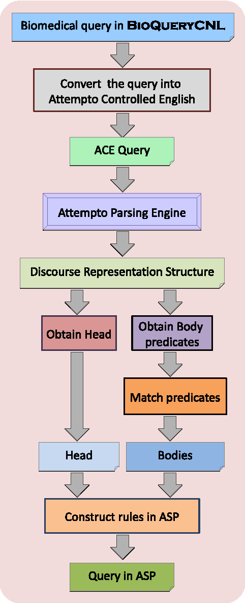 Figure 1 for Querying Biomedical Ontologies in Natural Language using Answer Set
