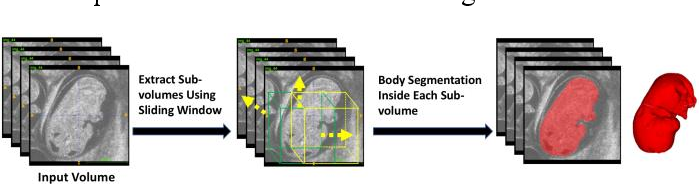 Figure 3 for Automatic Mouse Embryo Brain Ventricle & Body Segmentation and Mutant Classification From Ultrasound Data Using Deep Learning