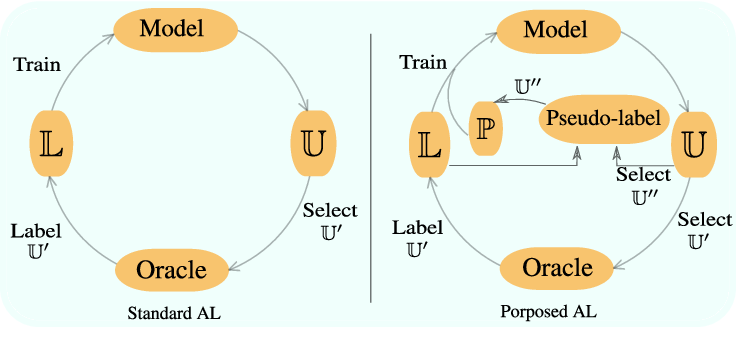 Figure 1 for Deep Active Learning for Joint Classification & Segmentation with Weak Annotator