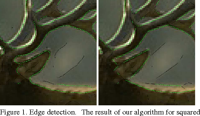 Figure 1 for Thin Structure Estimation with Curvature Regularization