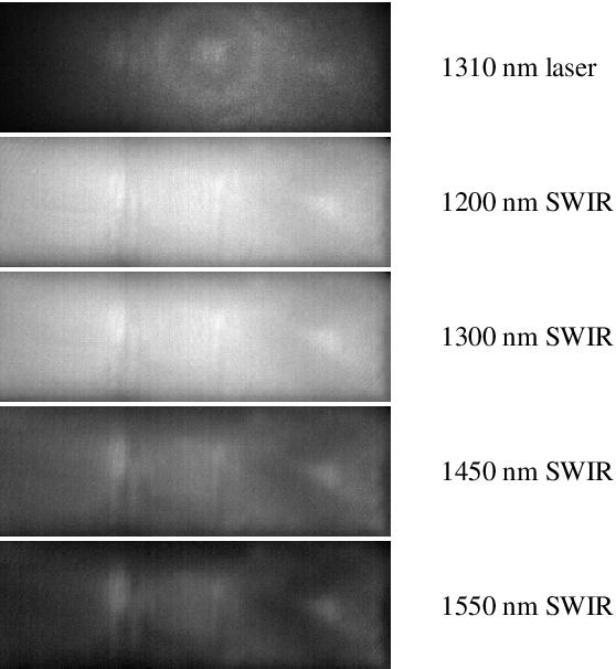 Figure 3 for On the Generalisation Capabilities of Fingerprint Presentation Attack Detection Methods in the Short Wave Infrared Domain