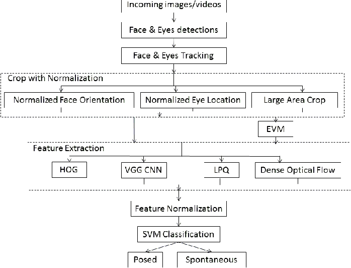 Figure 1 for Distinguishing Posed and Spontaneous Smiles by Facial Dynamics