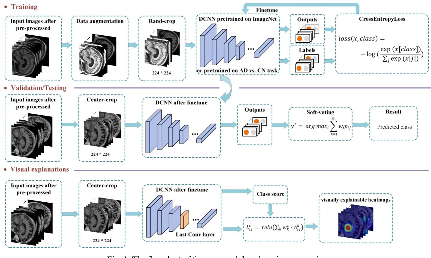 Figure 2 for An explainable two-dimensional single model deep learning approach for Alzheimer's disease diagnosis and brain atrophy localization