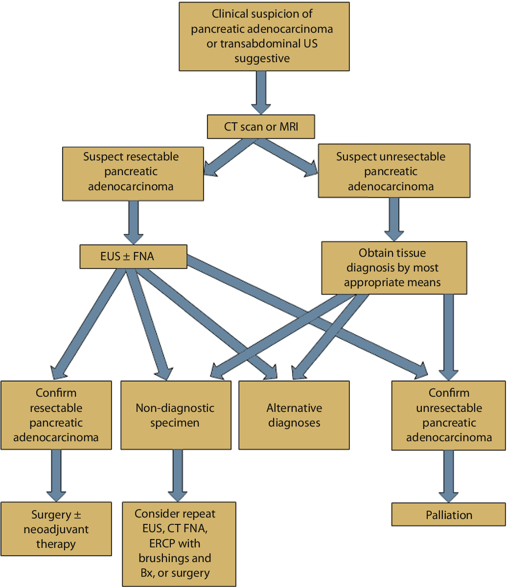 The role of endoscopy in the evaluation and management of
