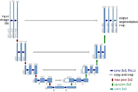 Figure 4 for A Deep Framework for Bone Age Assessment based on Finger Joint Localization