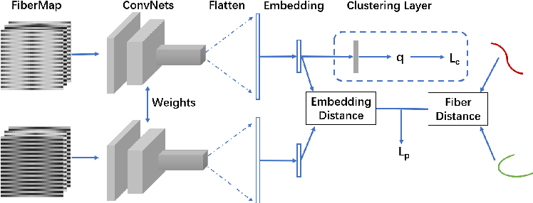 Figure 1 for Deep Fiber Clustering: Anatomically Informed Unsupervised Deep Learning for Fast and Effective White Matter Parcellation