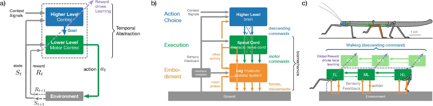 Figure 1 for Decentralized Deep Reinforcement Learning for a Distributed and Adaptive Locomotion Controller of a Hexapod Robot