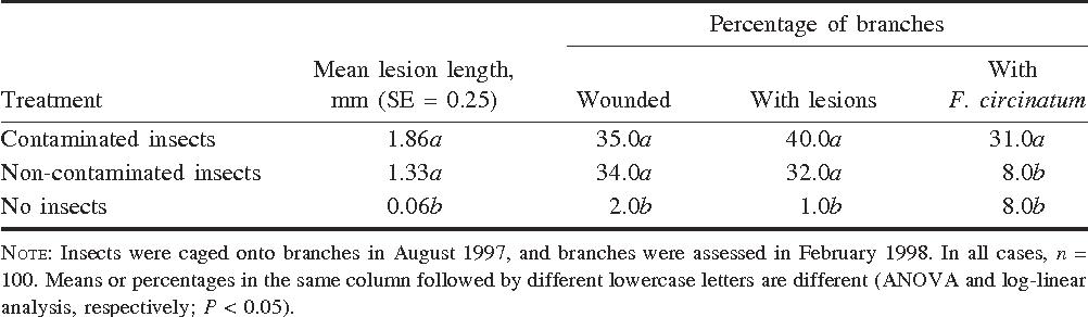 table 2 from twig beetles pityophthorus spp coleoptera rh semanticscholar org