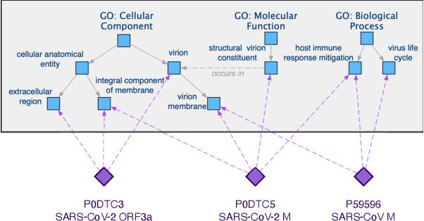 Figure 3 for Bio-JOIE: Joint Representation Learning of Biological Knowledge Bases