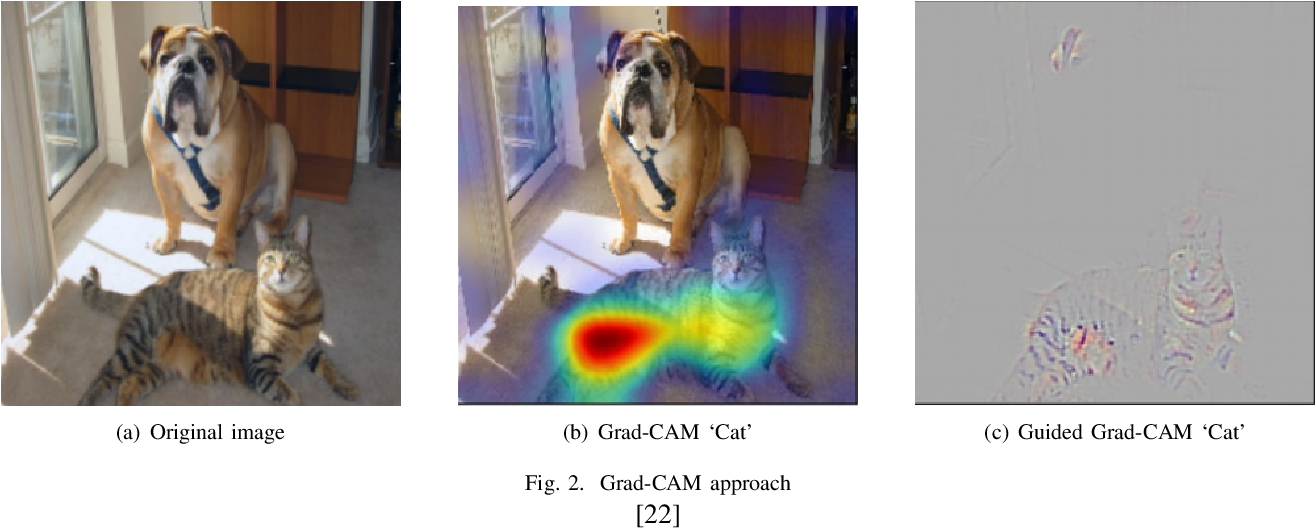 Figure 2 for Feature matching in Ultrasound images