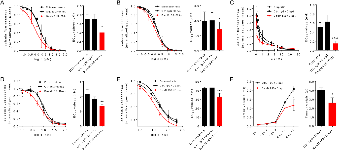 migration potential of cancel cells Curcumin blocks small cell lung cancer cells migration, invasion, angiogenesis, cell potential in sclc cancerwe cancer cell transwell migration.