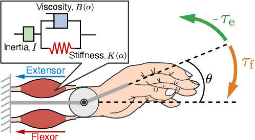 Figure 1 for Biomimetic Control of Myoelectric Prosthetic Hand Based on a Lambda-type Muscle Model