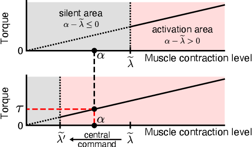 Figure 2 for Biomimetic Control of Myoelectric Prosthetic Hand Based on a Lambda-type Muscle Model