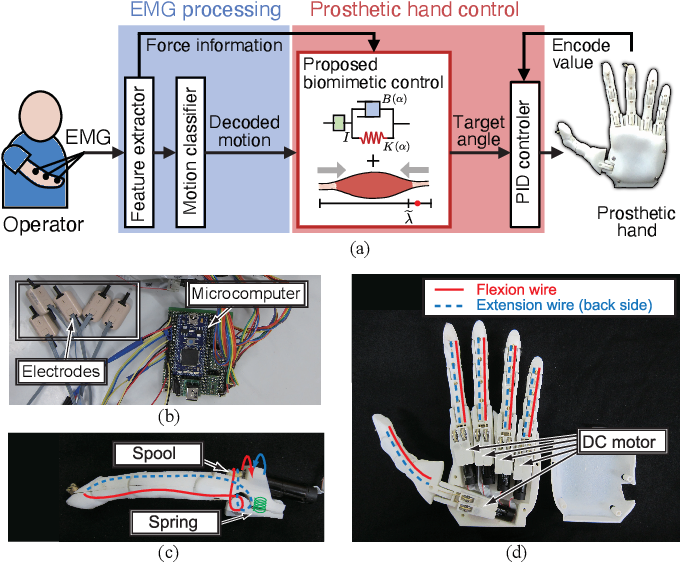 Figure 4 for Biomimetic Control of Myoelectric Prosthetic Hand Based on a Lambda-type Muscle Model