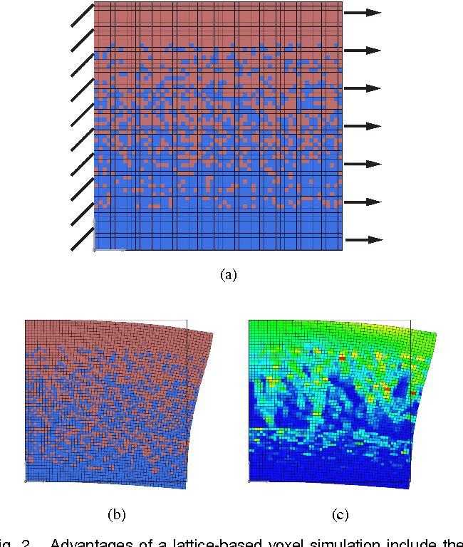 Figure 2 for Dynamic Simulation of Soft Heterogeneous Objects